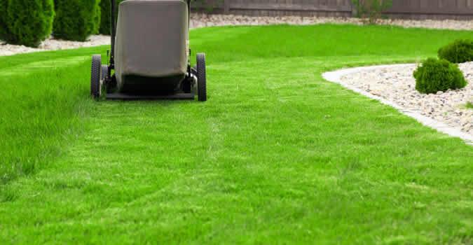 lawn-care1-675-350.jpg (675×350)