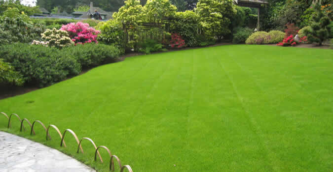 lawn-care2-675-350.jpg (675×350)